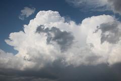 IMG_2653 (NebraskaSC Photography) Tags: sky storm nature weather clouds training warning landscape photography nebraska day extreme watch chase tormenta thunderstorm cloudscape stormcloud orage darkclouds darksky thunderhead severeweather stormchasing wx stormchasers darkskies chasers reports thunderheads stormscape skywarn stormchase awesomenature southcentralnebraska stormydays newx weatherphotography daystorm weatherphotos skytheme weatherphoto stormpics cloudsday weatherspotter nebraskathunderstorms skychasers weatherteam dalekaminski nebraskasc nebraskastormchase trainedspotter cloudsofstorms