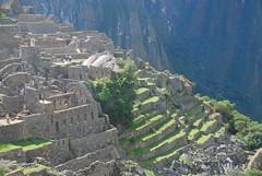 Machu Picchu Heights