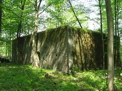 2012-050436 (bubbahop) Tags: ruins thirdreich nazis wwii poland worldwarii wolfs hitlers worldwar2 2012 lair hqs bunkers okh ketrzyn wolfsschanze mamerki kętrzyn mauerwald europetrip25
