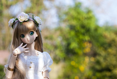The Rite of Spring (Koala Krash) Tags: ball dark doll dream vinyl koala bjd miko dynamite dd dollfie volks blanche krash jointed dojy dddy darkdojy