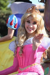 the worlds best photos of disneyland and lookalike