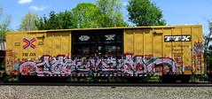 seamer ISB (timetomakethepasta) Tags: seamer isb loes wyze terms seams freight train graffiti ttx boxcar tbox