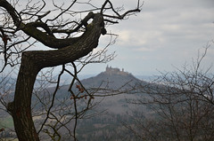 Tree and castle (-Kj.) Tags: trip tree castle germany easter hike badenwrttemberg hohenzollern zollernburgpanorama