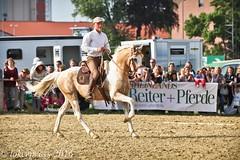 Pintos_Equitana_2016-0603 (tokerpress) Tags: messe pferde shou pintos tokerpress alexandertoker equitanaopenair ctokerpress2016 gestütgoldenepintos