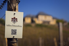 Rheingau   Germany (Photofreaks [Thank you for 2.000.000 views]) Tags: castle germany wine middle schloss rhine rhein rheingau wein johannisberg adengs wwwphotofreaksws shopphotofreaksws