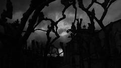 El anticristo (Revolver Olviden) Tags: trees bw white black blanco church monochrome atardecer arboles y negro iglesia satan devil diablo oscura