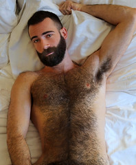 1188 (rrttrrtt555) Tags: hairy armpit muscles hair buzz beard bed bedroom eyes arms masculine chest lounge sheets pillow attitude stare shoulders flex buzzcut