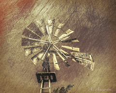 Oklahoma Stalwart (A Anderson Photography, over 1 million views) Tags: water windmill canon dempster blades annuoiled