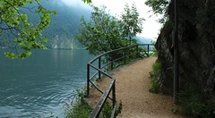 sentier de Gandria (bulbocode909) Tags: tessin eau suisse vert bleu arbres lacs printemps gandria sentiers