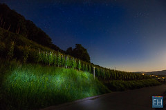 Stars over Switzerland (felix.hohlwegler) Tags: street longexposure night canon stars eos schweiz switzerland vineyard glow nightlights nacht outdoor pavement citylights 7d blau canoneos weinberg sterne langzeitbelichtung abends blauestunde weinberge sternenhimmel nachthimmel strase drausen starrysky eos7d canoneos7d astrometrydotnet:status=failed astrometrydotnet:id=nova1620200