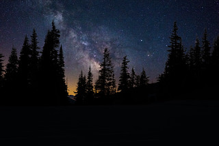 Hurricane Ridge Stars