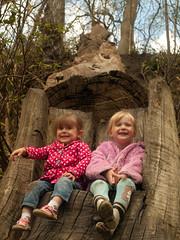 Sisters (keljbj) Tags: tree nature girl sisters children child olympus e410 brockhillcountrypark