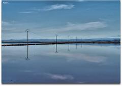 Salinas de la Trinidad (Nati C.) Tags: naturaleza postes agua paisaje salinas catalunya tarragona reflejos deltadelebre parquenatural cruzadas latrinidad ltytrx5 cruzadasii