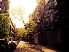 Afternoon Sunlight on a Greenwich Village Street - New York City (Vivienne Gucwa) Tags: nyc newyorkcity trees light sun beautiful pretty manhattan gothamist nycstreet lowermanhattan curbed greenwichvillage fireescapes treelinedstreet wnyc nycphoto manhattanstreet nycfireescapes cityphoto newyorkphoto nycphotography greenwichvillagestreet viviennegucwa viviennegucwaphotography nyctreelinedstreet beautifulnycstreet