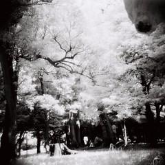 Infrared Tokyo (chant0m0) Tags: film japan analog tokyo lomo diana infrared ir820 efle