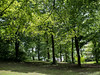 Endlich grün 18.05.2012