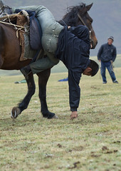 Horseman Picking Up Something On The Ground While Riding A Horse, During Horse Game, Saralasaz Jailoo Area, Kyrgyzstan (Eric Lafforgue) Tags: two people horse playing male men animal sport vertical fun mammal person amusement asia exterior action fulllength culture competition entertainment riding pasture acrobatics gallopinghorse tradition centralasia kyrgyzstan twopeople humanbeing nomads saddle inaction horseriding gallop colorphoto bridle horseman buzkashi kyrgyzrepublic acrobacy inmovement kirghizistan kirgistan 2069 pickingup twopersons kirghizstan equestriangames kirgisistan horsegames  nomadiclifestyle  kokboru ulaktartysh  saralasazjailoo quirguizisto oglaktartis