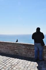 (Aria92) Tags: barcelona sea sky man castle animals person persona mare uomo cielo castello animali barcellona aria92