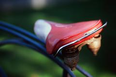 Bike Seat (scott_z28) Tags: old classic film bike bicycle canon vintage eos fuji dof antique seat rusty 85mm slide velvia transparency 100 schwinn f18 e6 ef corrosion elan7 wideopen rollfast ncps