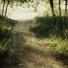 garded moment (jssteak) Tags: morning trees lake leaves canon square landscape sand glare shadows path grasses hdr textured filtered t1i applesandsisters