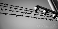 Dachau - Barbed Wire (LhiannanShee) Tags: bw fence germany munich barbedwire dachau excursion concentrationcamp mygearandme mygearandmepremium mygearandmebronze ringexcellence thegoldenachievement rememberthatmomentlevel1