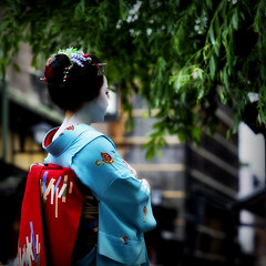 Maiko Kikushino of Miyagawacho (mbenghozi) Tags: voyage travel light portrait people woman cloud sun tourism girl beautiful beauty japan night wonderful pose photography japanese tokyo town photo nikon women kyoto asia pretty raw photographer dof view photos bokeh extreme picture culture makeup tourist best exotic maiko geiko journey geisha kimono wanted gion fullframe nikkor michel 70200 lenses ochaya miyagawacho hilight travelphotography nikonlenses nikonlens greatbokeh  d3s montrealphotographer benghozi   70200vrii nikkor70200mmf28gvrii   mbenghozi travelother higashiyamadri lensesnikkor wwwmichelbenghozicom michelbenghozicom travelandother
