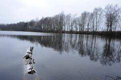 Turnhout-07