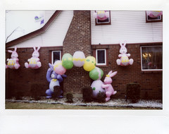 Outside Easter Decorations; Queens, New York (hogophotoNY) Tags: nyc decorations house holiday brick bunny bunnies film analog easter fuji 14 queens instantcamera instax 2014 queensny fujiinstax fujiinstantfilm instaxwide queensnyusa queensnyus easter2014