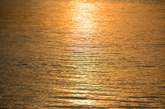 Liquid Gold DSC_0908 (John Dreyer) Tags: sunset sea gold nikon southcarolina environment atlanticocean hiltonheadisland caliboguesound photocreditjohndreyer nikond5100 copyright2014johnjdreyer