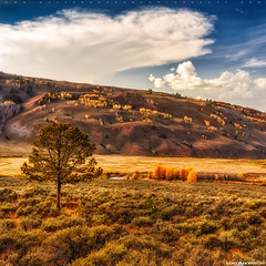 Crystal Creek Canyon Hillside #2 (Matt Anderson Photography) Tags: travel autumn sky usa cloud tree fall tourism water colors vertical wisconsin creek season landscape outdoors photography gold nationalpark rocks stream day crystal outdoor hiking fallcolors hill scenic nobody canyon adventure madison land yellowstonenationalpark northamerica destination kelly flowing wyoming grandtetons aspen hillside cascade scenics lansdscape haydenvalley colorimage westernusa ruralscene nationalelkrefuge waternature otherkeywords mattandersonphotography zzzpics