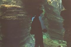 Lurking In The Shadows (tito_mikani) Tags: shadow man hat silhouette analog aquarium underwater