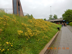 2016_05_210008 (Gwydion M. Williams) Tags: uk greatbritain england britain coventry westmidlands warwickshire
