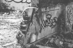 Taman Festival \\ Bali (Ashly Rose) Tags: park vacation urban bali abandoned monochrome festival photoshop canon indonesia graffiti blackwhite exploring 85mm creepy adventure explore cc theme explorers derelict themepark taman urbanexploring aden denpasar f12 macbook urbanexplore 85mmf12lii canon85mmf12lii canon5dmkii 5dmarkii tamanfestival photoshopcc