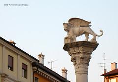 . (zioWoody) Tags: leone statua vicenza colonna piazzadeisignori signori leonealato