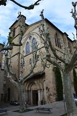 Platanes et collgiale Saint-Barnard - Romans-sur-Isre (Jeanne Menj) Tags: platanes glise collgialesaintbarnard romans romanssurisre