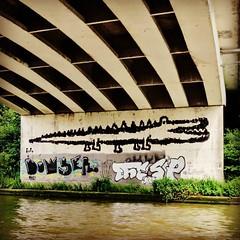 Hey, another #crocodile - #Gent #Belgium #streetart #visitgent #graffiti #streetartbel #graffitiart #graffitiart_daily #streetarteverywhere #urbanart #urbanart_daily #streetart_daily (Ferdinand 'Ferre' Feys) Tags: streetart graffiti belgium belgique belgi urbanart graff ghent gent gand graffitiart krokodil artdelarue urbanarte instagram ifttt