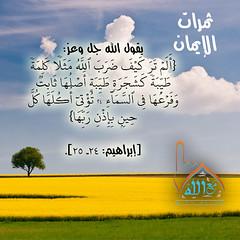 50 (ar.islamkingdom) Tags: الله ، مكان القلب الايمان مكتبة أسماء المؤمنين اسماء بالله، الحسنى، الكتب، اسماءالله