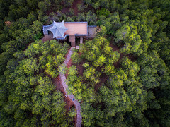 Enlightenment (kirkhillephotography) Tags: china wallpaper temple photo forrest chinese aerial tibet pro tibetan phantom aerials drone dji kirkhille