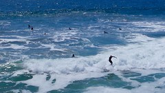 Surfers off Manhattan Beach (kristenlanum) Tags: ocean california blue summer beach water losangeles surf waves break pacific surfer manhattanbeach