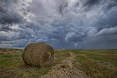 Hail's Bales (Ryan Wunsch) Tags: canada clouds farming saskatchewan bale funnel stormchasing stormchaser skyporn