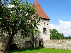 DSC05592 (Mr.J.Martin) Tags: germany austria burghausen castle burgfest salzach bavaria gapp exchange