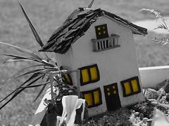 Janelas amarelas (Z Carlos) Tags: window yellow casa gimp amarelo janela selectivecolour corselectiva