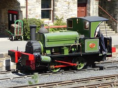 """Lewin"" at Rowley Station (Terry Pinnegar Photography) Tags: museum train victorian steam beamish londonderry lewin locomotive countydurham shunter 683 stephenlewin londonderryrailway seahamharbourdockcompany"