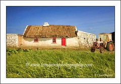 Old Tatched Cottage Co Clare (jonestown_pic /Tom GracePhotography.com) Tags: old ireland oldhouses cottages coclare tatched wwwtomgracephotographycom imagecopyrightedtotomgracephotography imagesmaynotbeusedordownlaodedwithoutwrittenpermissionfromtomgrace
