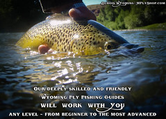 Skilled Wyoming Fly Fishing Guides in Dubois Wyoming will put you on the Fish (Marlows Fly Shop) Tags: greenriver snakeriver bighornriver wadefishing driftboatfishing marlowsflyshop mflyshopcom flyfishinginwyoming wyomingflyfishingguides duboiswyomingflyfishingguides jacksonholewyomingflyfishingguides windriverfishing