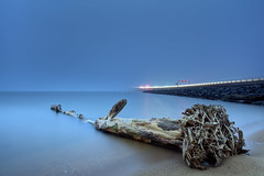 a road to nowhere (dK.i photography (counting down)) Tags: longexposure morning tree beach fog canon jetty debris roots maryland baybridge 50 chesapeakebay 301 sandypoint singhray 5dmkii rgnd 205seconds ef1740f40lusm