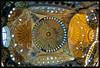 Haghia Sophia : Dome Decorations (ZameenZahari) Tags: history turkey istanbul fisheye byzantine haghiasophia muslimart nikkor105mmf28fisheye nikond300