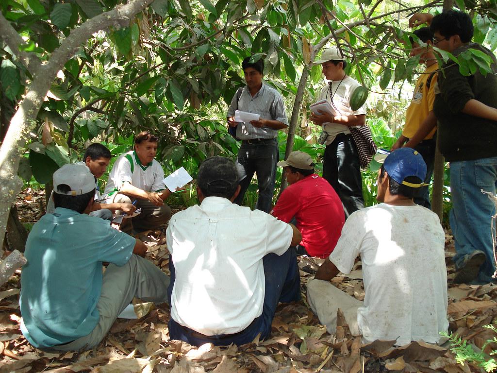 Formation des producteurs en gestion biologique des maladies et ravageurs