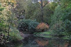 Autumnal fairy tale /   (DolphinART) Tags: park autumn nature fairy tale