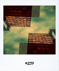 """#DailyPolaroid of 11-6-12 #257 • <a style=""""font-size:0.8em;"""" href=""""http://www.flickr.com/photos/47939785@N05/7189212335/"""" target=""""_blank"""">View on Flickr</a>"""